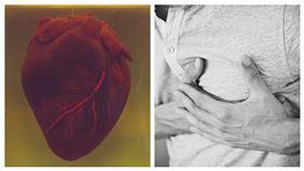 心臟病示意圖(翻攝unsplash、Pixabay)