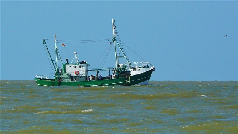 台灣漁船疑非法捕魚 印尼領海遭當地海軍逮捕