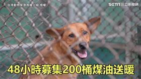 ▲▼台灣動物緊急救援小組發起募款,短短48小時就募集了200桶煤油的捐款。(圖/台灣動物緊急救援小組 授權)