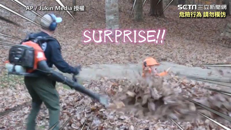落葉堆中蹦出兩顆頭 外國爸嚇到腿軟