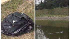 中國,江蘇,河川,汙染,豬肉,塑膠袋(圖/翻攝自梨視頻)