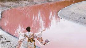 金門粉紅慈湖(ig使用者提供)