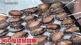 ▲中秋節到了,網紅「Apple老師」特別訂購100顆新鮮活鮑魚要和家人一起享用。(圖/Apple老師 授權)