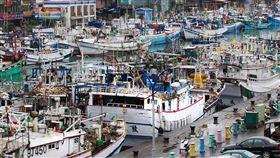 漁船,漁業,遠洋漁業,漁夫,圖/翻攝自Greenpeace 綠色和平 (台灣網站)臉書