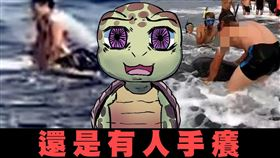 「都講過八百遍了,還是有人手癢」海洋委員會今(5)天表示,小琉球又發生騷擾海龜事件(圖/翻攝自海洋委員會臉書)