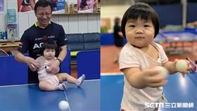 1歲女童打桌球/力揚乒乓運動館教練卓儇授權提供