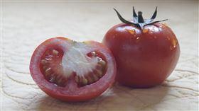 蕃茄(圖/翻攝自unsplash)
