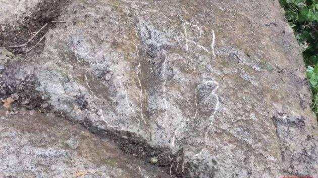 5歲童山上喊「有恐龍腳印!」專家一看驚:距今1.3億年