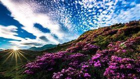 清境的天空 淳境景觀休閒山莊(圖/淳境景觀休閒山莊提供)
