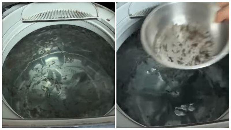 洗衣機狂漂「黑屑屑」!過來人驚喊:「這東西」千萬別再加