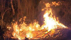 偷燒,廢棄物,新竹縣,北埔,山區