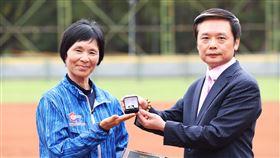 張簡金玲,棒壘球協會副理事長 林昆漢(圖/翻攝畫面)