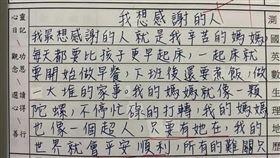 盧秀燕獎狀,日記 (圖/翻攝自小一聯盟臉書社團)