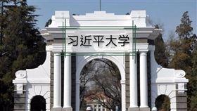 清華大學,習近平大學(圖/翻攝自Change.org)