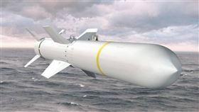 波音(Boeing)製造的AGM-84H/K SLAM-ER空對地飛彈。(圖/翻攝自波音網站)