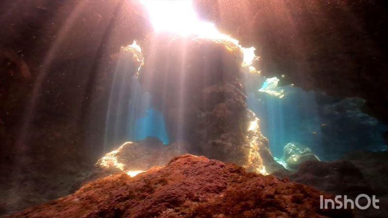 綠島秘境/潛進洞穴中 如仙境的深海
