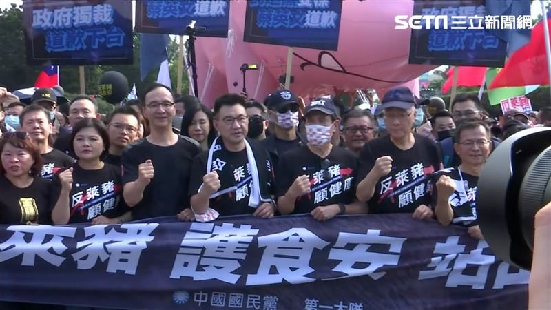 秋鬥在野黨上街反萊豬 民進黨喊話:回歸國會理性討論!