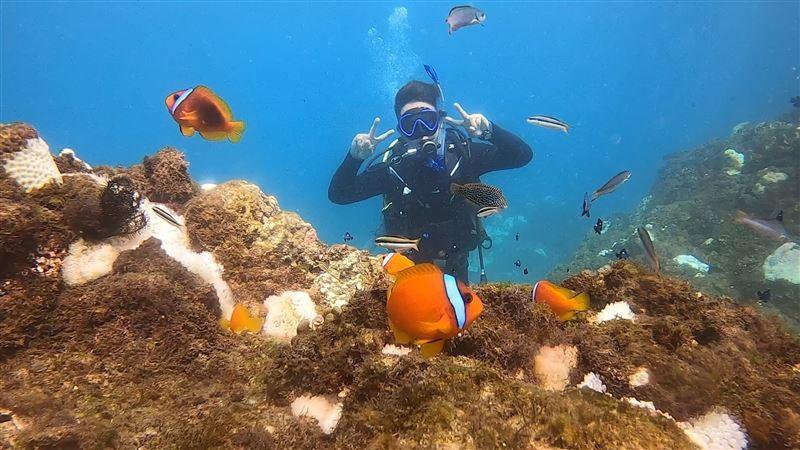 遇150歲神龜 星光歌手改當潛水員