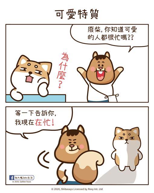 柴語錄_可愛特質