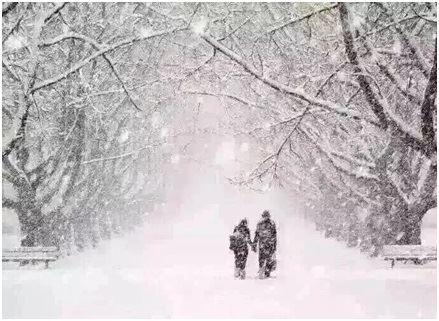 大雪俗諺測來年 家家戶戶醃肉備新年