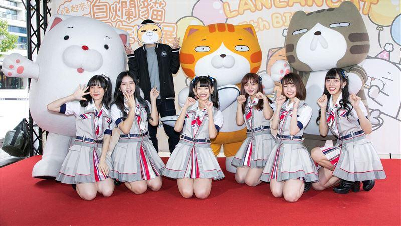 AKB48樂當貓奴 見白爛貓超興奮