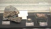科學結合藝術 微化石展現大自然神奇