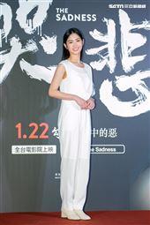 雷嘉納出席電影《哭悲》首映會。(圖/記者楊澍攝影)