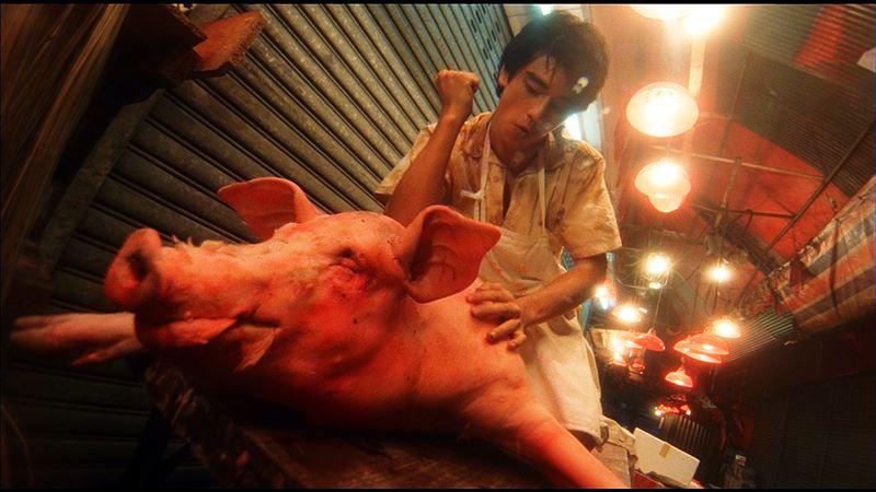 男神半夜幫豬按摩 21歲青澀樣遭洩