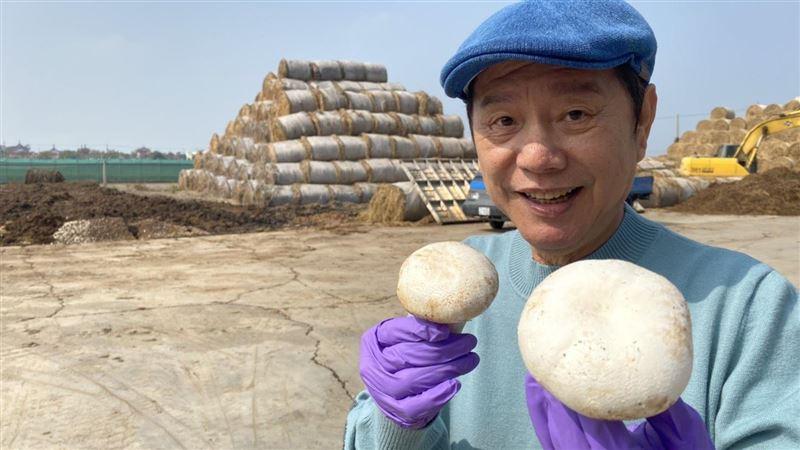 爆紅洋菇救地球!年處理5000噸果菜廚餘「垃圾變黃金」