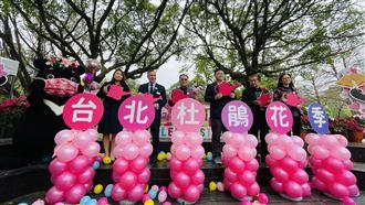 台北杜鵑花季展開 音樂會限千人入場