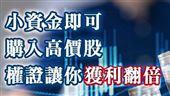 選擇權證 小資族參與台股獲利行情