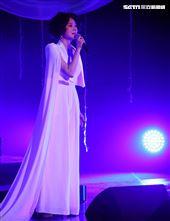 坣娜演唱會。(記者邱榮吉/攝影)