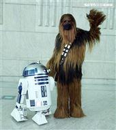 R2D2、丘巴卡出席星戰日。(記者邱榮吉/攝影)