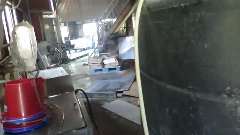 太噁!高雄一間製麵廠竟有濃厚污垢及蟲屍 衛生局限期改善