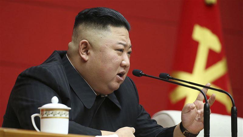 金正恩不准!北韓女優拍AV遭處決