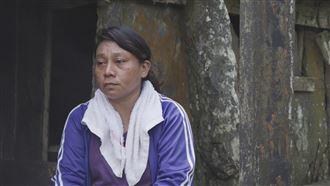 台灣女頭目也扛不住 淚:對不起小孩