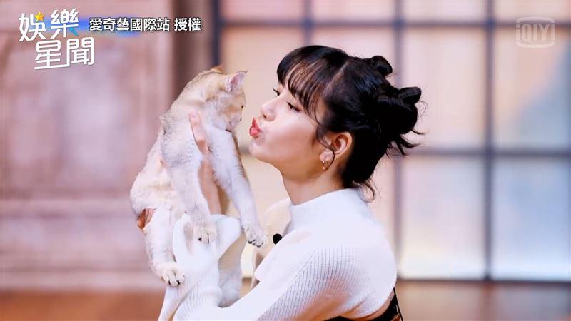 韓女星向愛貓索吻 下秒慘遭打臉拒絕