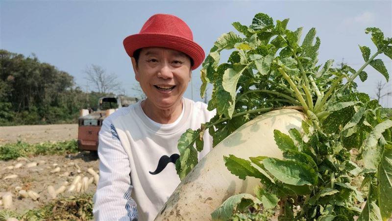 嘉義布袋「聽音樂長大的菜脯」倒頭栽的蘿蔔竟是好吃秘訣?