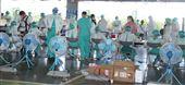 亞東醫院醫護人員協助環南市場篩檢。(記者邱榮吉/攝影)