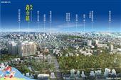 橋科未來利多 龍騰鑫市鎮買在起漲點