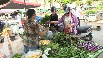 產地喊跌、市場看漲 颱風走遠菜價亂