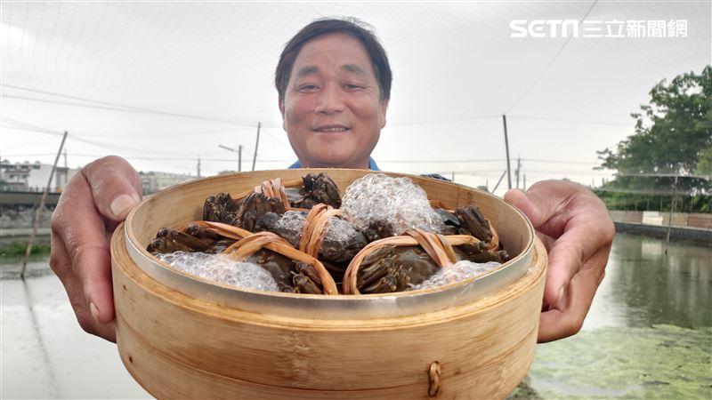 秋天就要吃大閘蟹 達人公開養蟹秘訣