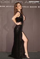 入圍台北電影獎女配角的安妮穿著性感爆乳高叉黑色禮服出席頒獎典禮。(記者邱榮吉/攝影)
