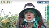 印尼移工變老闆娘用愛灌溉水果